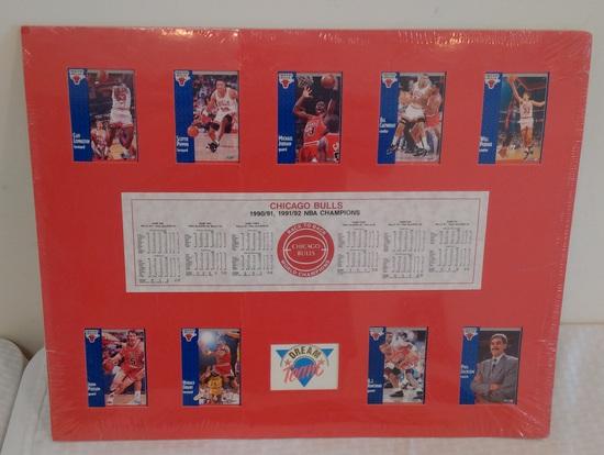 Rare 1991-92 Fleer NBA Basketball Chicago Bulls Dream Team Card Display Matted Jordan Pippen Jackson