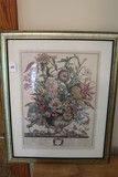 Scientific/Ornate Floral Print by M. Fletcher in Gilted Frame/Matt