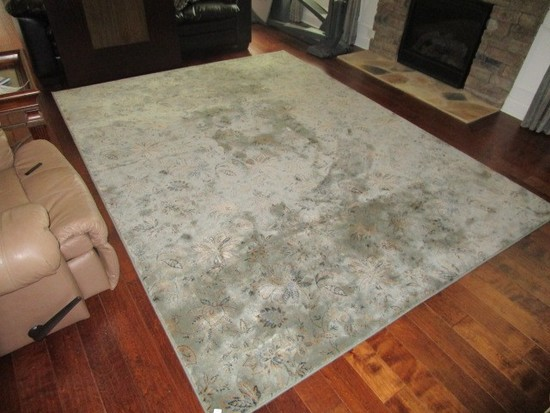 Light Blue Floral Patterned Center Floor Rug