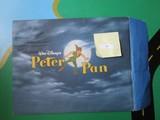 Disney Store Lithograph Peter Pan in Matt