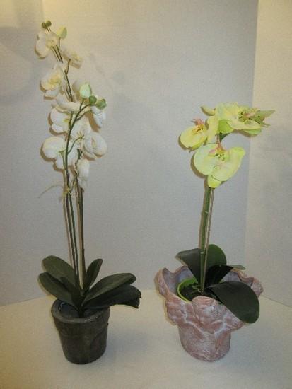 Lot - 2 Silk Orchids in Bloom & Terra Cotta Relief Cherubs Bust White Wash Finish