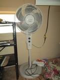 Typhoon Black & Decker Standing Fan