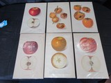 Yearbook U.S. Dept. of Agriculture Picture Prints Summer King Apple, Macintosh Apple