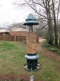 Squirrel Buster Hanging Bird Feeder