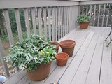 Lot - Pair Round Cut/Groove Band Planters & 3 Planter Pots Various Sizes