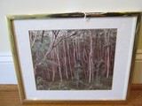 Woodland Picture Print in Brassplate Frame/Matt