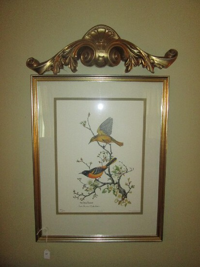 Baltimore Oriole Birds in Branches Litho Print Limited 1847/2000 Edition
