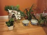 Lot - 3 Silk Plants in Planters, Wreath & 2 Blue/White Semi-Porcelain Planters