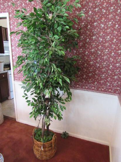 Wicker Basket Planter w/ Tall Faux Ficus Tree
