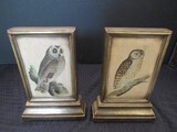 Pair - Bookends Owl on Bronze Ceramic in Gilded Motif