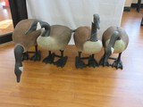Gaggle of 4 Realistic Canada Geese Set Molded Garden Statues Standing & Feeding
