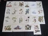 22 Bird Prints Lot - Misc. Bird Picture Prints