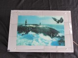 Lighted Eagle/Lighthouse Scenes in Mirrored Frame/Wood Back