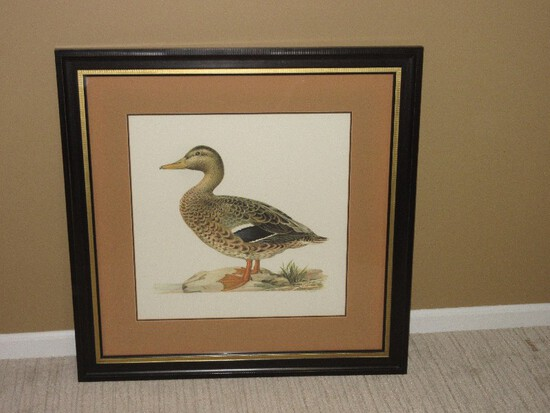 Old Colony Furniture Ducks III Series Female Mallard Duck Anas Platyrhynchos