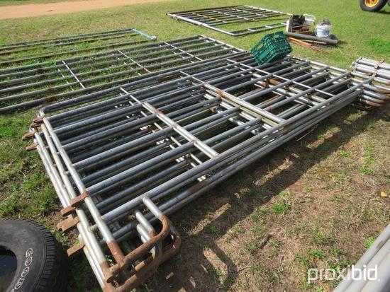 (8) 10' livestock panels