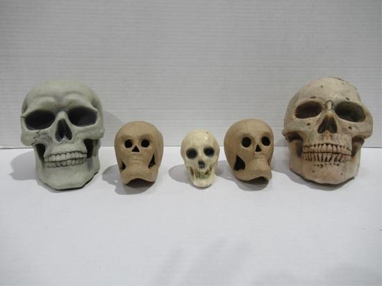 Spooky Skull Lot of (5)