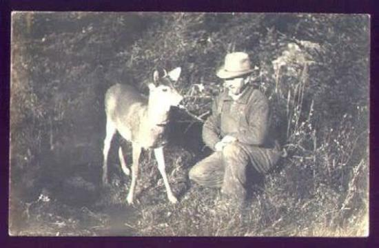 1910 PHOTO MAN KNEELING IN WOODS w/ LIVE DEER FAWN Interesting real photo postcard showing man