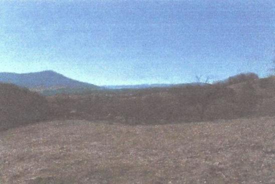 Lot 11 43.02 acres.