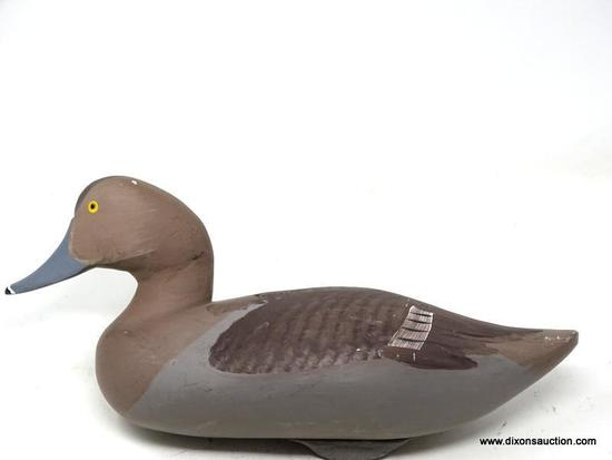 MARYLAND BLUEBILL HEN DECOY. 1960'S WORKING DECOY. MOST LIKELY MADE IN THE HAVRE DE GRACE AREA AND