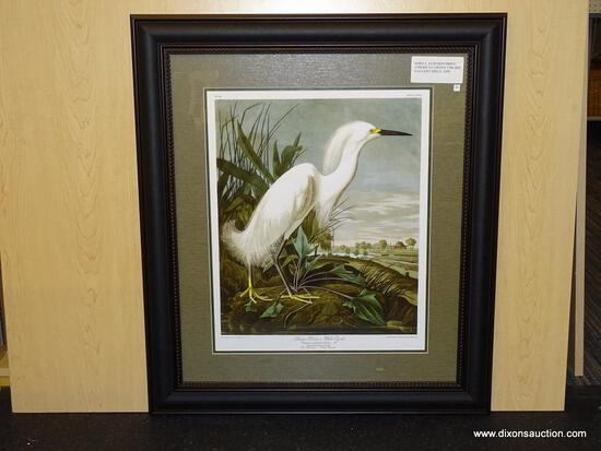 "SNOWY HERON BY JOHN AUDUBON. MEASURES 28 3/4"" X 32 3/4""."