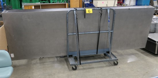 Optical Table, Technical Manufacturing Corp. 71-463-02