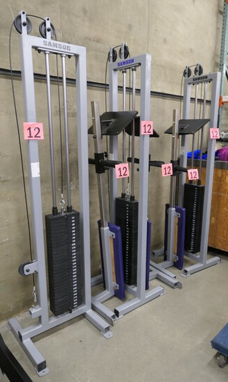 Weight Machines and Benches: Samson Custom, 3 Items