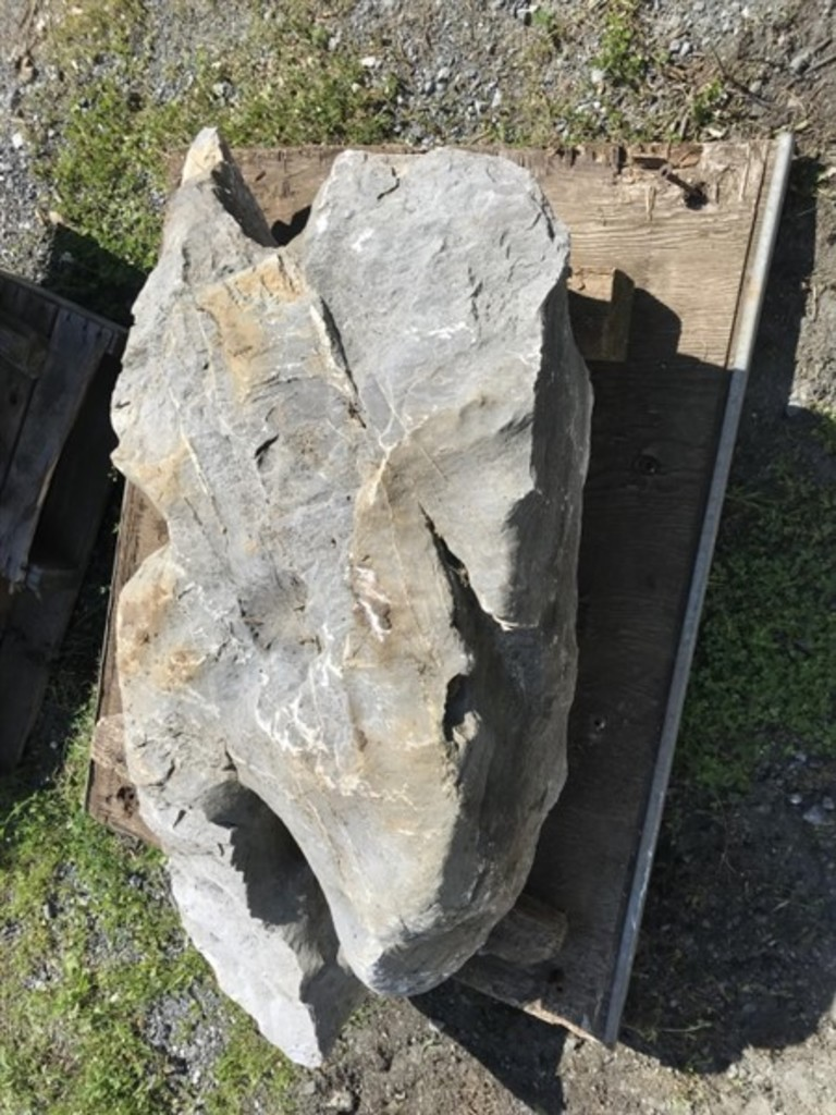 Limestone irregular shape yard rock
