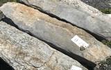 Irregular Shaped Limestone Pavers