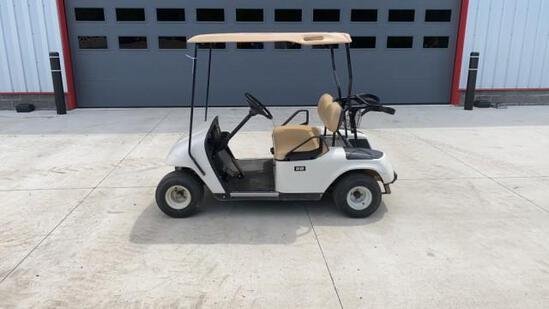 """ABSOLUTE"" Easy Go Gas Golf Cart"
