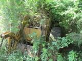 loader in woods
