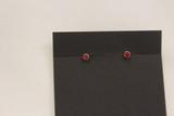 Sterling w/Coral Earrings