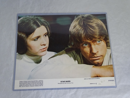 Star Wars 8 x 10 Princess Leia and Luke Skywalker