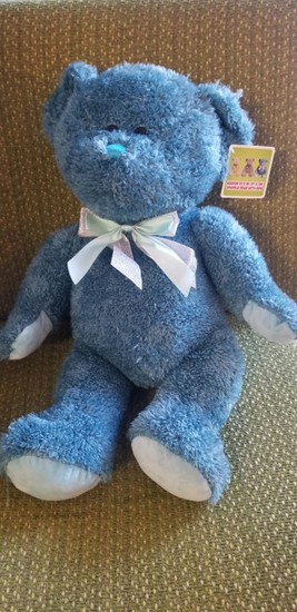 Teal Sparkle Teddy Bear