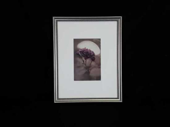 Unnamed Mollie Plummer Framed Rose Artwork