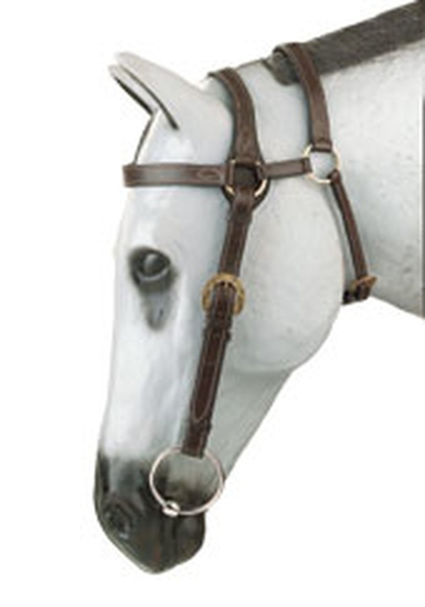 BRID 220BR EXTENDED HEAD BARCOO BRIDLE W/ REINS