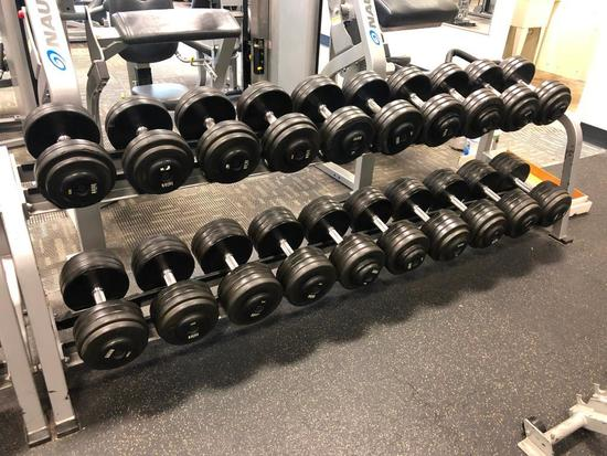 Nautilus Dumbbell Rack w/ Intek Dumbbells, 55lbs to 100lbs