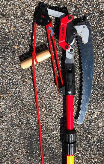 Dual Link Extendable Tree Saw + Pruner