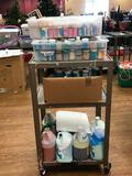 Large Assortment of Glazes, Cover Coats, UnderGlaze, Etc. 3 Shelves Worth