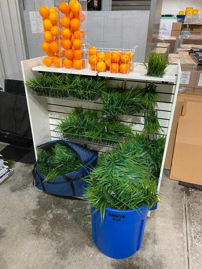 Autograph Foliage Artificial Fruit and Grass, Acrylic Display Boxes for Fruit