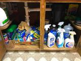 Cleaning Supplies under the Sink; Cascade, Simple Green, Lysol, etc