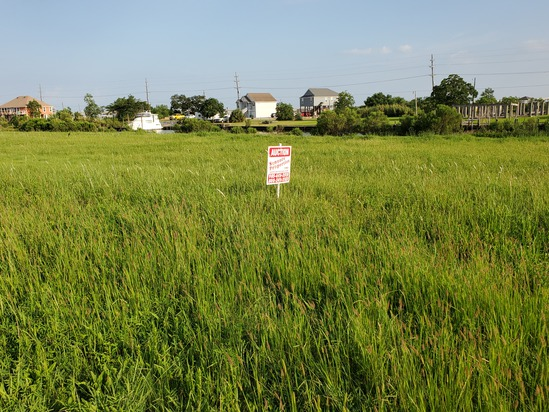 Online Only Multi-Property Real Estate Auction