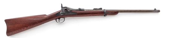 Springfield Trans'l 1873/1877 Trapdoor Carbine