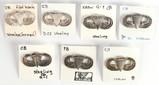 U.S. Military Paratrooper Wings Pins (7)