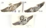 U.S. Air Force Aircrew Wings Pins (3)