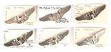 Aerial Gunner Wings Pins (6)