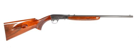 Browning BAR in .22 Auto, .22 Long Rifle