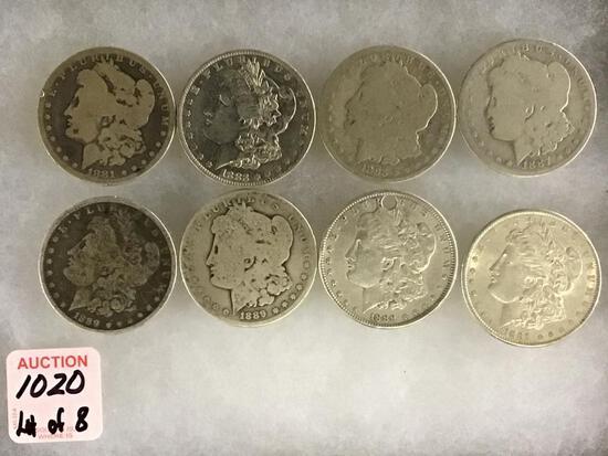 Collection of 8 Morgan Silver Dollars