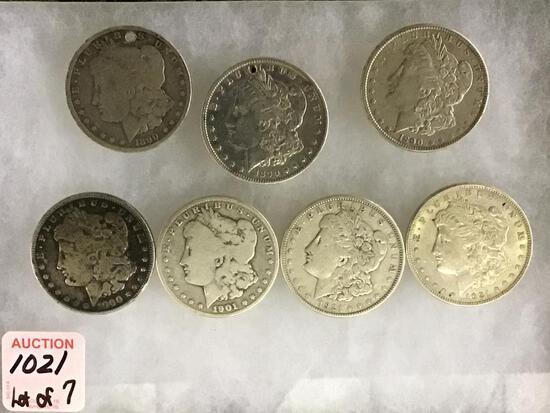Collection of 7 Morgan Silver Dollars