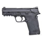 Smith & Wesson, M&P380 SHIELD EZ M2.0 NEW IN BOX, .380ACP, 11663