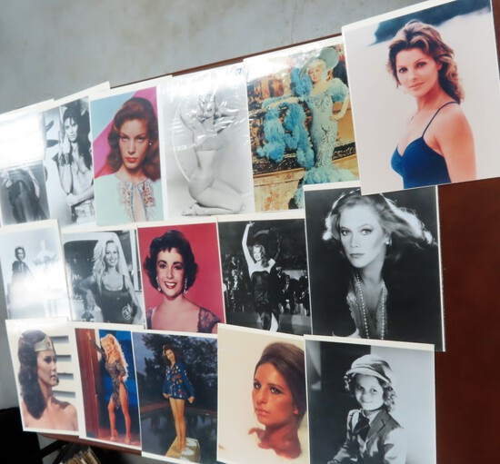 Collection of Female Movie Stars, All One Money!